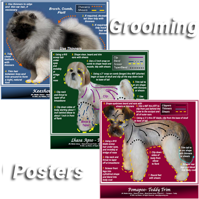 Dog Grooming Poster Collage